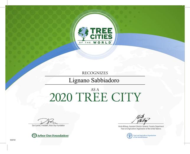 tree-1Tree-City