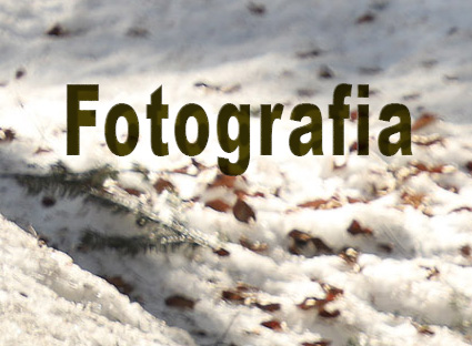fotografia - arte
